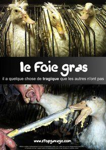 Cages for Geese