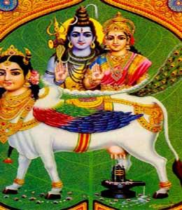 Vaca Astral o Vaca Sagrada