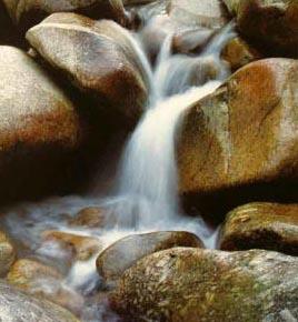 शुद्ध जल