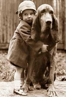 El Perro, El Mejor Amigo del Hombre, Amistad