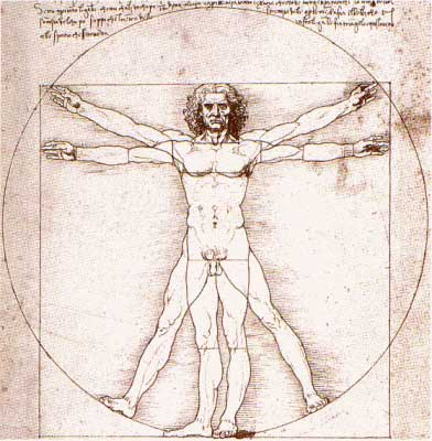 Leonardo da Vinci - Vitruvius-tanulmány - a tökéletes ember