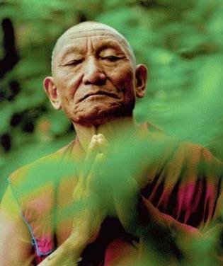 Serene reflection, enlightenment