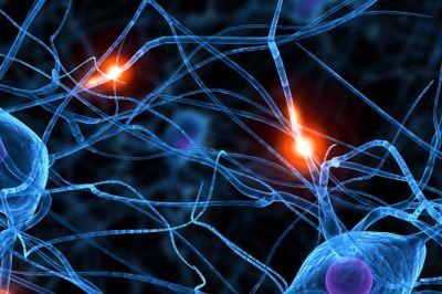 Ingerek a neuronokban