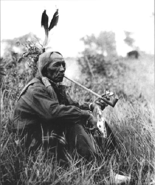 Egy krí indián - Krí indián prófécia