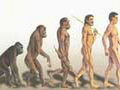 EVOLUTION, INVOLUTION, REVOLUTION - revolution of the consciousness , dogma of evolution