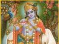 Legile care ne guvernează - Krishna și Vaca Sacră