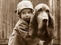 Koira, ihmisen paras ystävä, ystävyys, Kerberos