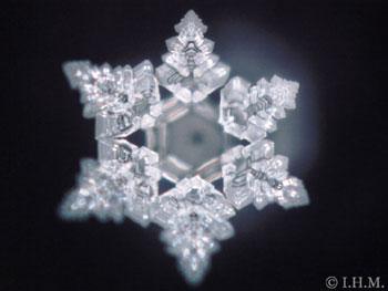 Le cristal 'Espérer'- Emoto Masaru