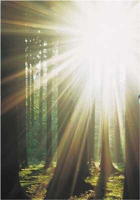 Soarele reprezintă Esenţa, Conştiinţa, Gnoza, Autocunoaşterea
