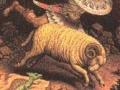 Zodia Berbecului- Berbec