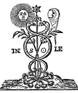 Ida i  Pingala, dve masline Hrama