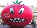 Genetske modifikacije, akt protiv Prirode