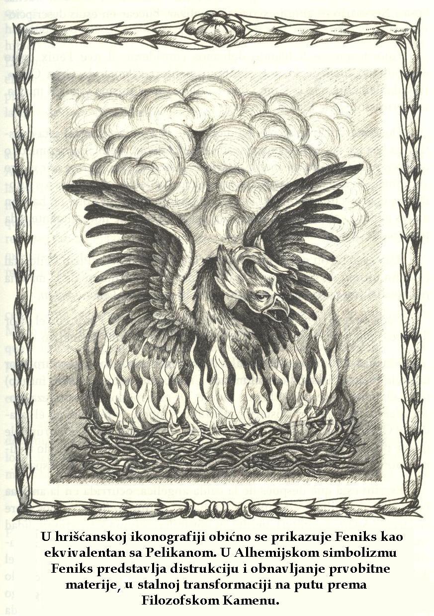 Feniks (Phoenix)