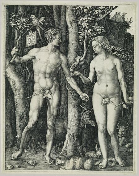Stablo Dobra i Zla, Stablo Života